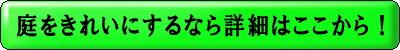 bnr-kirei
