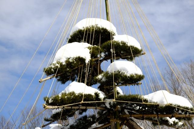 12.24-3雪吊り